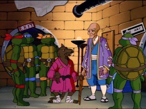 Teenage Mutant Ninja Turtles - Season 5 (1991)