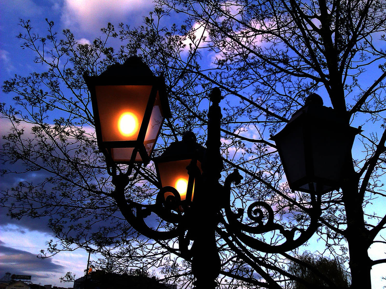 Wallpapers: Street Lamps
