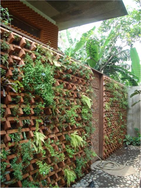 Taman Vertikal, Inovasi Untuk Rumah Berlahan Sempit