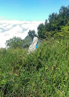 Semak-semak Menuju Pos 4 Merapi Via Sapuangin