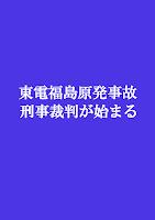 リーフレットweb版