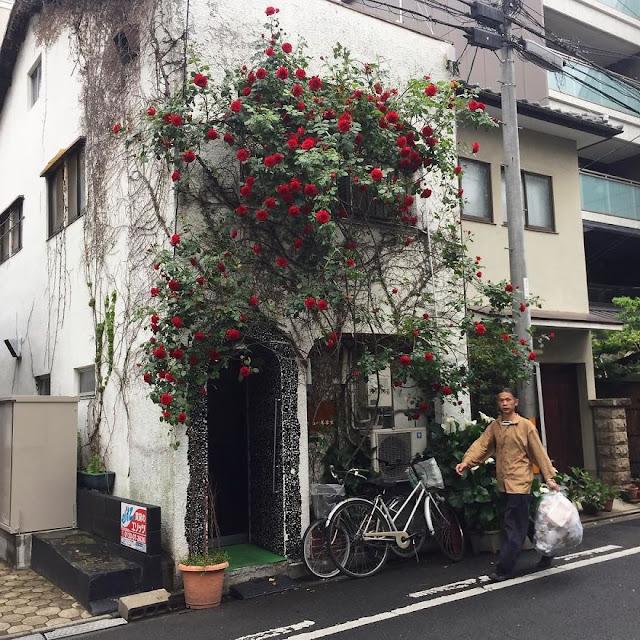 John Einarsen, Kioto, Japonia, Kyoto Journal, Budynki, Budownictwo, Dom, Przybudówka,