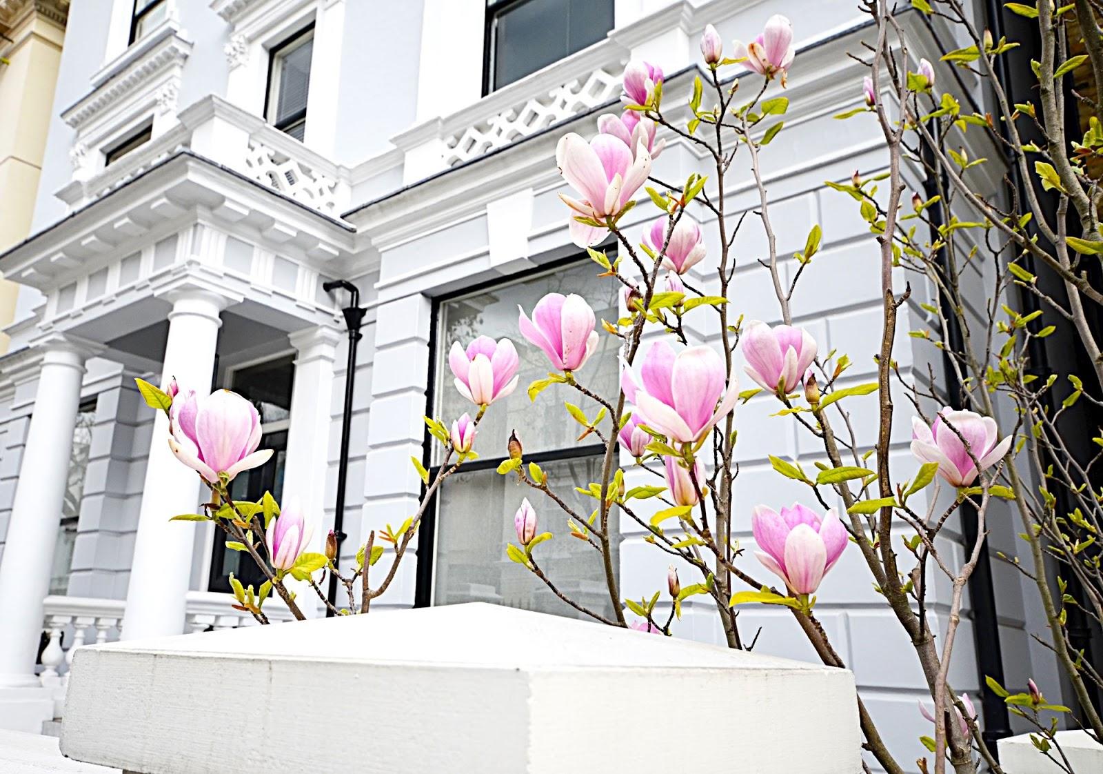 wiosna w londynie | pogoda w londynie