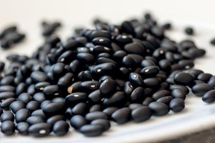 ถั่วดำ (Black Beans) @ www.bridgetnielsen.com