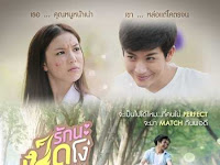 SINOPSIS Ugly Duckling - Perfect Match Episode 1 - 9 Selesai