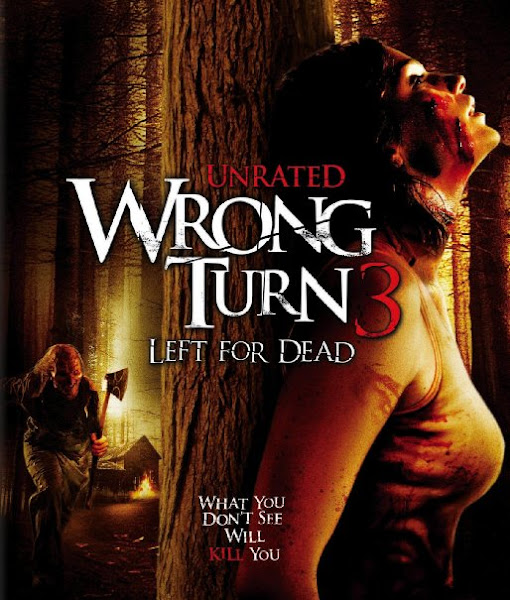 Poster Of Wrong Turn 3 Left For Dead 2009 UnRated 720p BRRip Full Movie