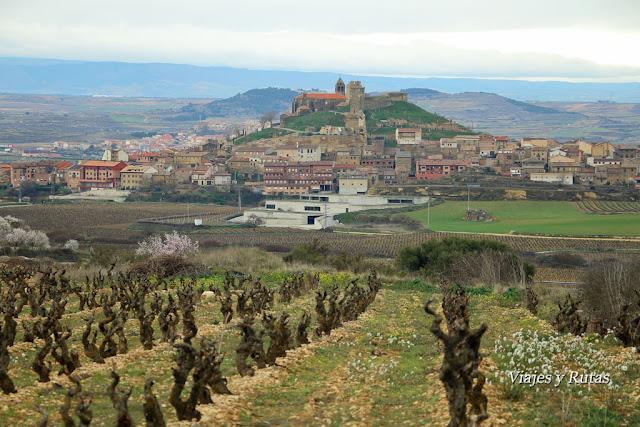 Viñas en San Vicente de la Sonsierra, La Rioja