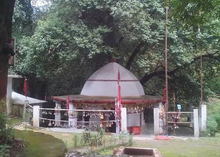यहां स्थित है माता भद्रकाली का प्राचीन मंदिर, दर्शन मात्र से शत्रुओं का नाश