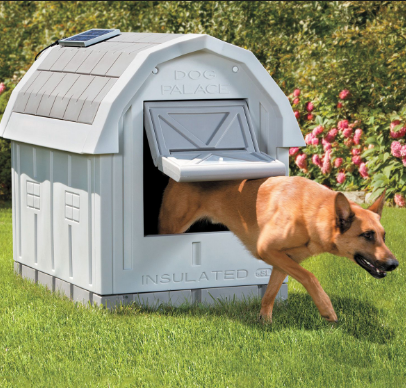 Dog Palace Insulated Dog House Reviews