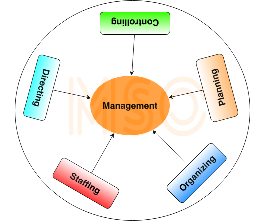 Apple organizing functions of management