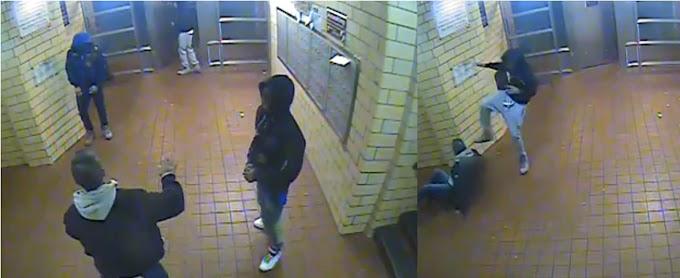 Tres atracadores adolescentes dan paliza a dominicano en El Bronx y le llevan diez dólares
