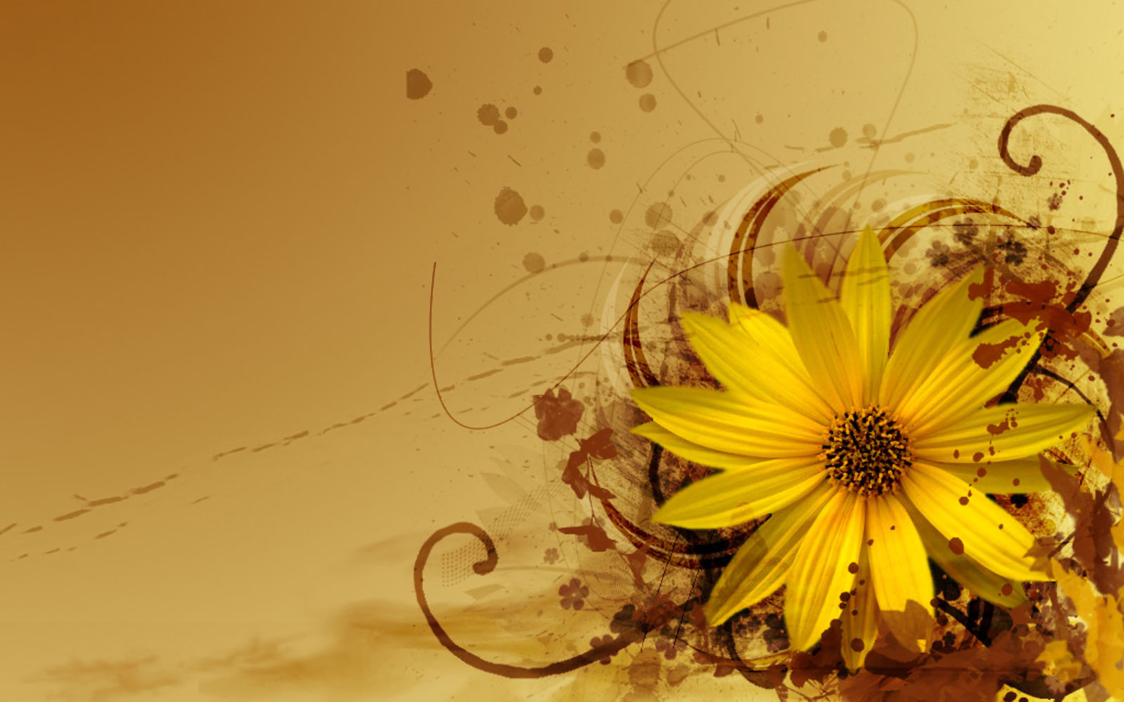 wallpapers: Windows 7 Flowers Wallpapers