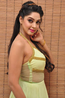 Actress Angana Roy Latest Pohtos in Long Dress at Sri Sri Movie Audio Launch 0018