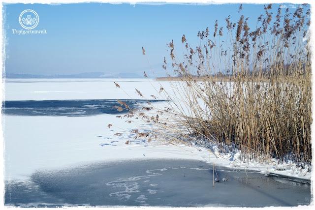 Gartenblog Topfgartenwelt Diana lernt Fotografieren Wallersee im Winter: Fotokurs für Einsteiger