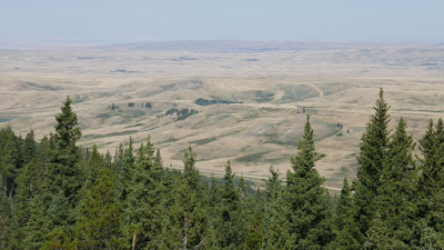 Cypress Hills, Alberta, Elkwater, Horseshoe Canyon, viewpoint