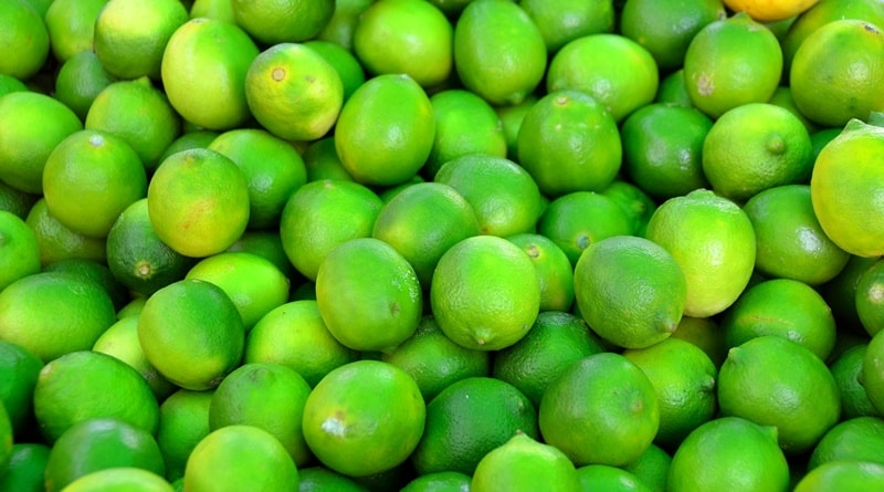 ปลูกมะนาว อาชีพเสริมเกษตร