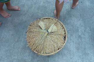 Rice Harvest Basket Cultural Parade Participant
