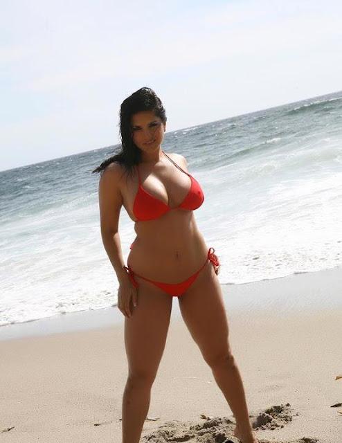 60d056cc842db Bikinis of america  American Bikini Shop usa mix match swimwear ...