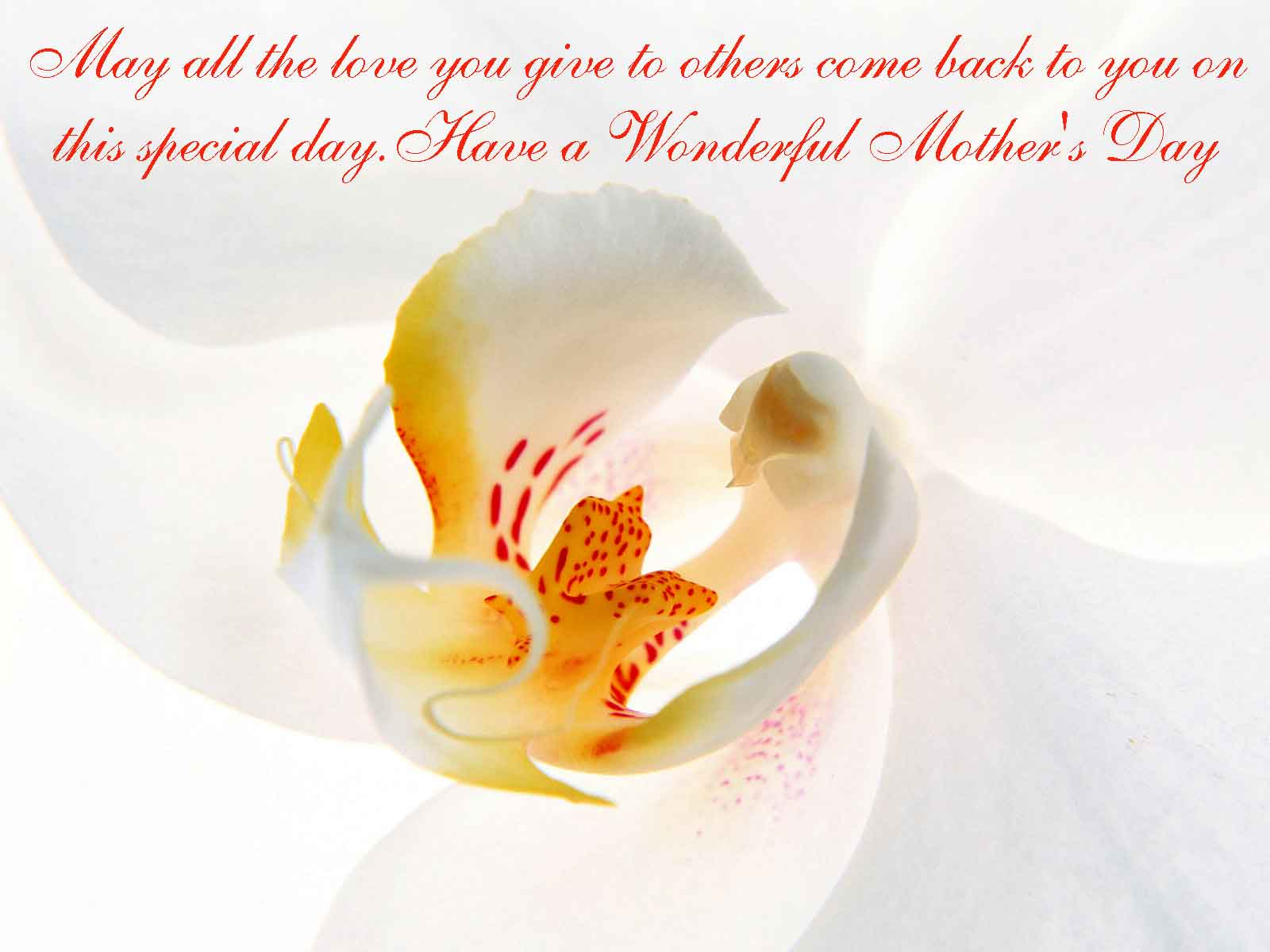 Love Mothers Day Message The Best Collection Of Quotes