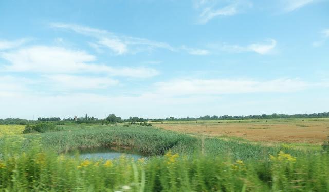 """Serbia, okolice Somboru. Kilka kilometrów dalej, """"nad pięknym, modrym Dunajem"""" jest posterunek graniczny z Chorwacją."""
