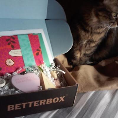 BetterBox.Life