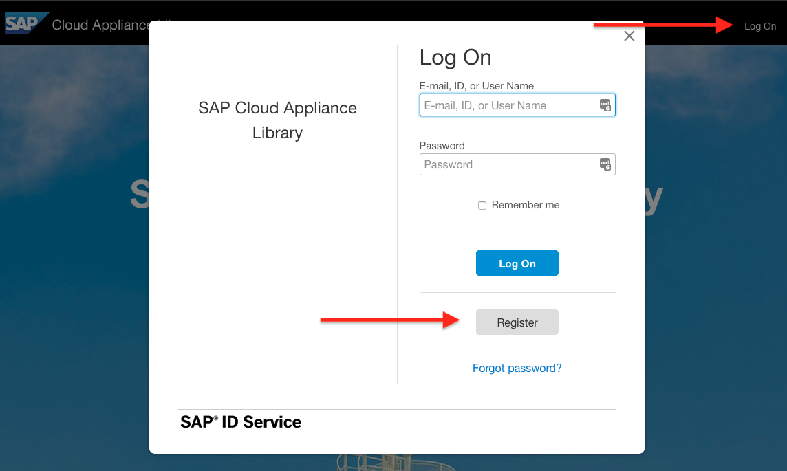 sap sneak preview license key request