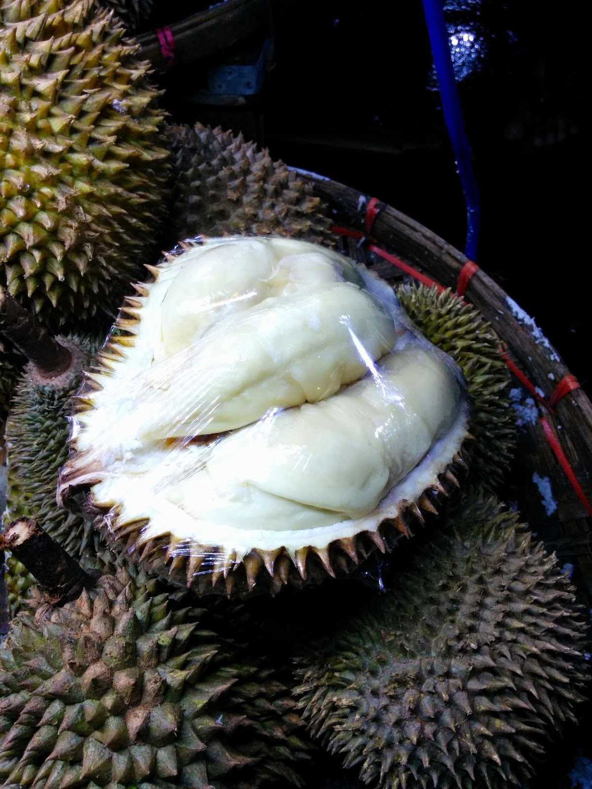 Durian Info: Durian Seasons In Durian Production Areas