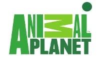animal planet polska online