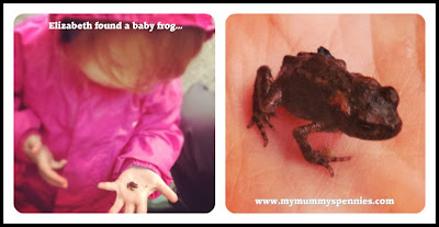 toddler holding a baby frog