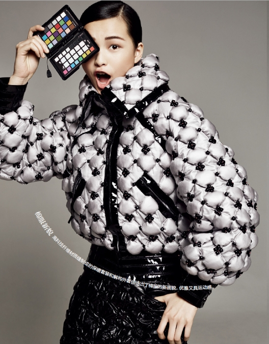 Chanel 2015 AW Silver Bomber Down Jacket Editorials