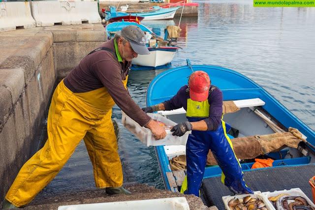 El Gobierno canario destina dos millones para compensar las pérdidas económicas en el sector pesquero y la acuicultura