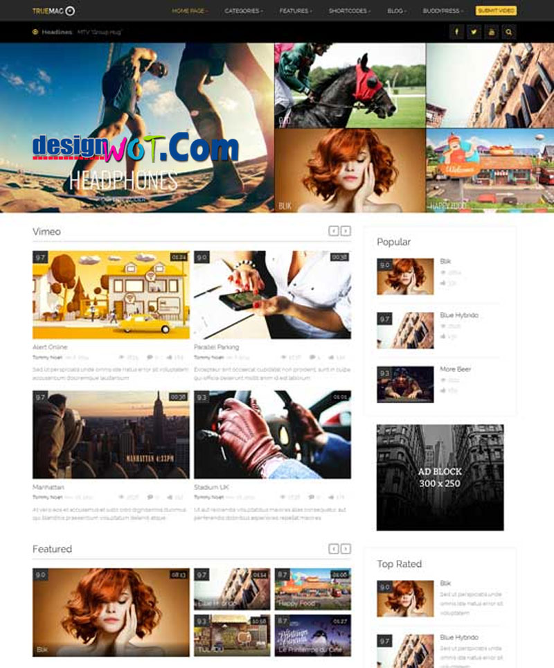 TRUE MAG Video Movie WordPress Theme