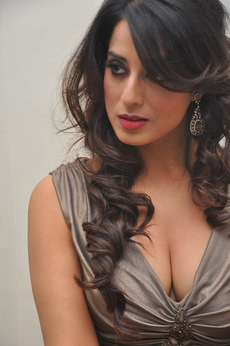 Mahi Gill Hot Sexy Photos At Thoofan Movie Audio Launch -3159