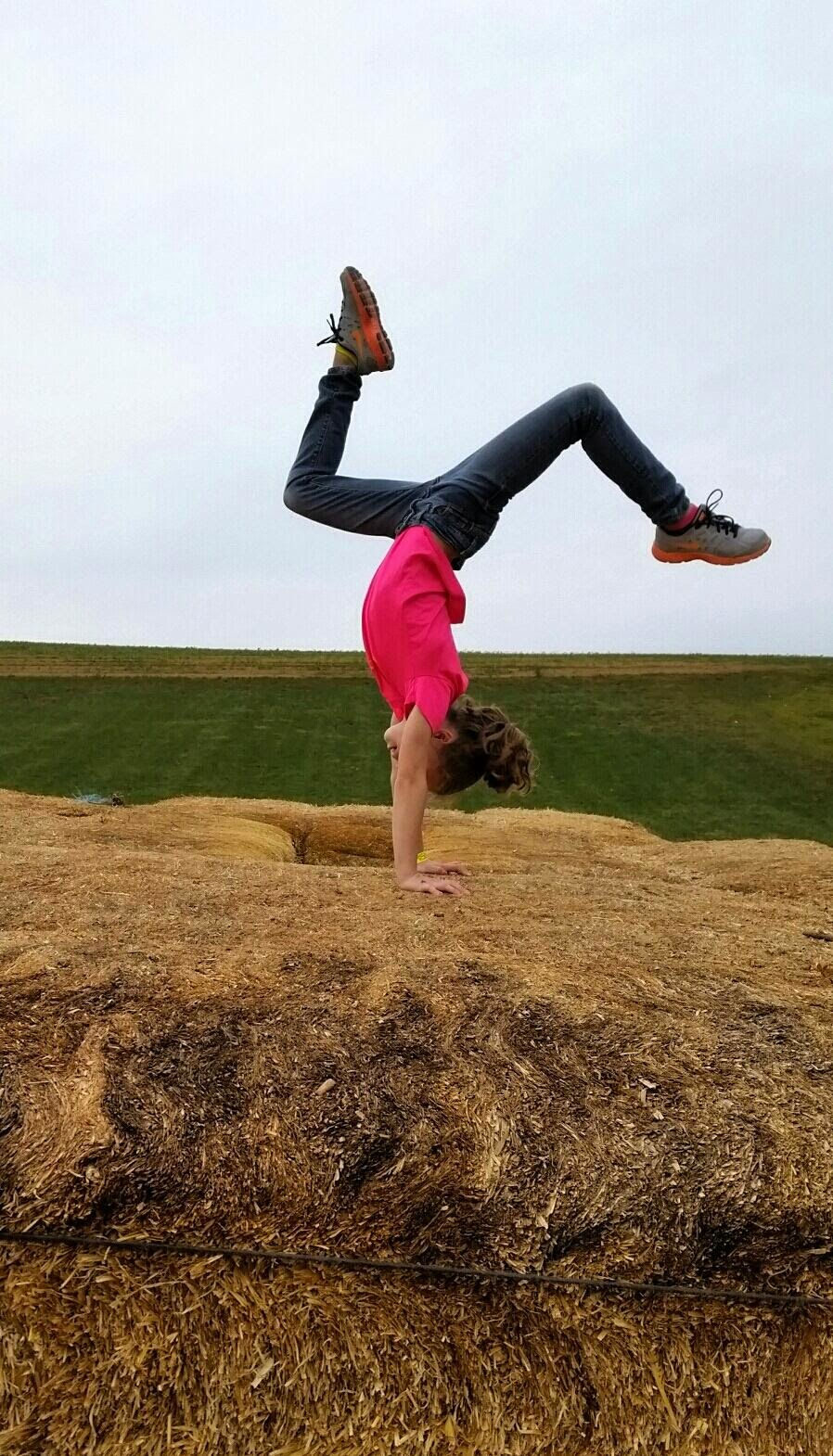 Traveling Handstands October 2014