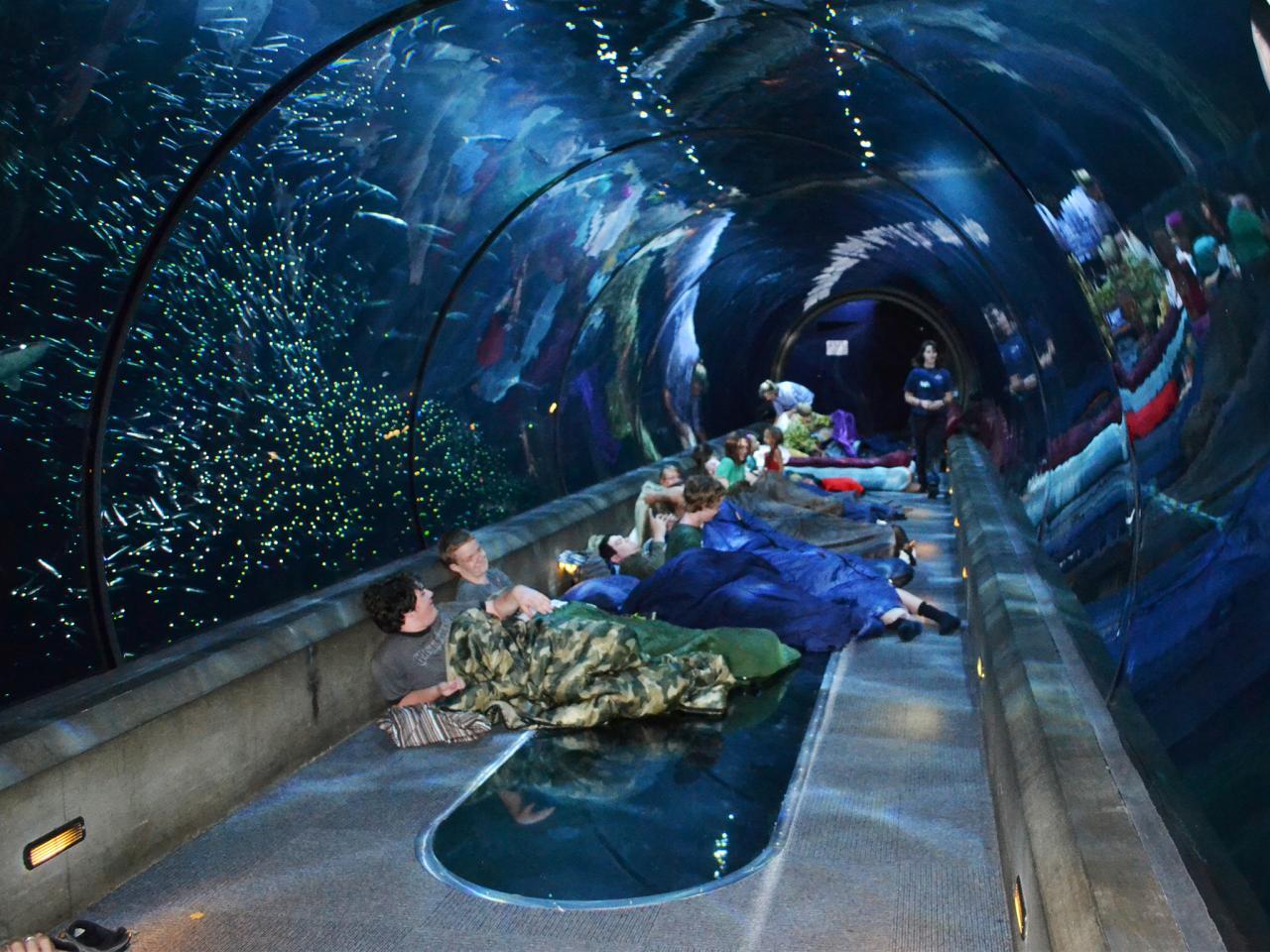 فنادق ومنتجعات مدهشة تحت الماء