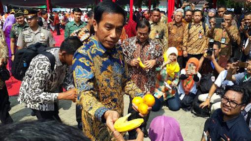 Presiden Ingin Buah Nusantara Kuasai Pasar Dunia