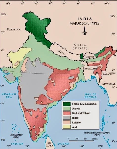 Major Soils of India Map