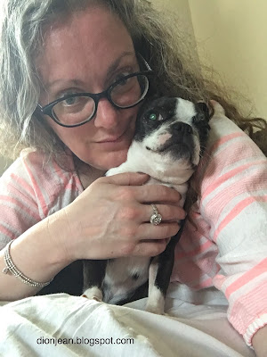 Boston terrier and her mother