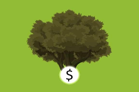 مهارات لحياة مالية ناجحة - إدارة المال - استثمار - الذكاء العاطفي وغيرهم