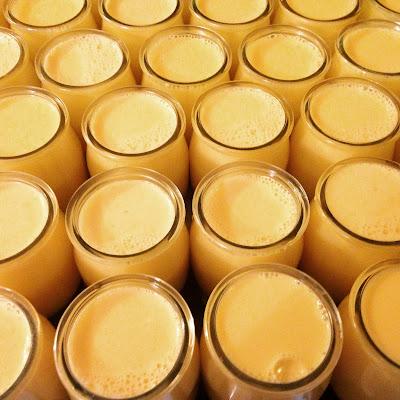 pluvignier, ferme de Logodec, vache bretonne pie noir, bio, fromagerie bretagne, la laiterie de paris, blog fromage, blog fromage maison, tour du monde fromage, tour de france fromage, fromage morbihan