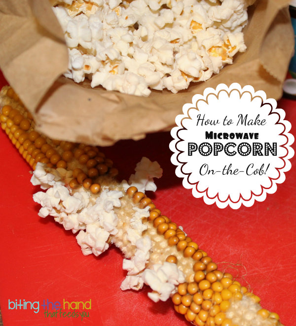Biting The Hand That Feeds You: How To Dry and Pop Popcorn