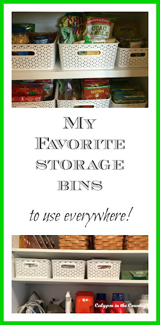 My Favorite Storage Bins to use Everywhere