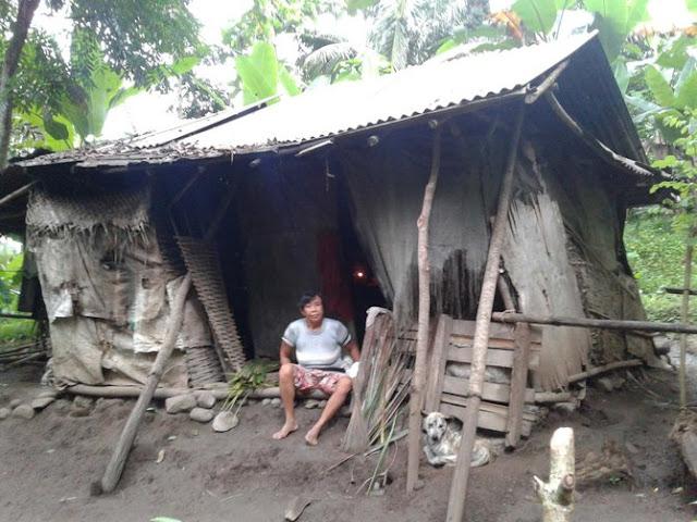 Sedih! Janda Ini Sebatang Kara Hidup Bertahun-tahun Ditengah Hutan