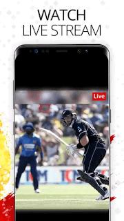 Jazz Cricket - screenshot 4