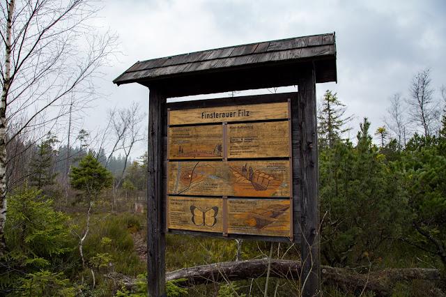 Auf vergessenen Wegen von Finsterau nach Buchwald  Wandern im Bayerischen Wald  Wanderung Nationalpark Bayerischer Wald 02