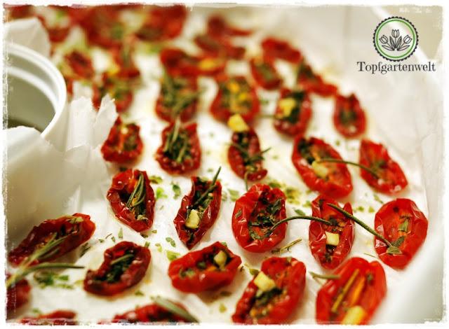 Gartenblog Topfgartenwelt Antipasti: im Dörrautomat getrocknete, gewürzte Tomaten vor dem Einlegen in Öl