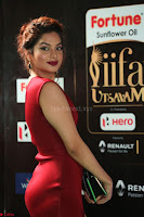 Natasha Nebasha in a Leg Slit Sleeveless Stunning Red Gown at IIFA Utsavam Awards 2017 074.JPG