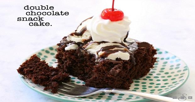 Double Chocolate Snack Cake Recipe