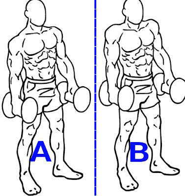 dumbbell shrugs, best trap workout