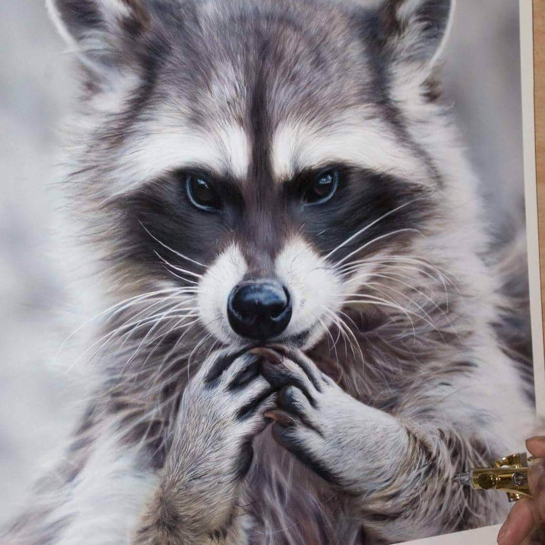 04-Scheming-Raccoon-M-Oosterlee-Realistic-Airbrush-Animal-Paintings-www-designstack-co